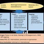 succesfactoren R&D-regelingen